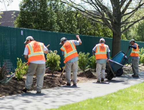 5 Reasons to Mulch Your Commercial Landscape